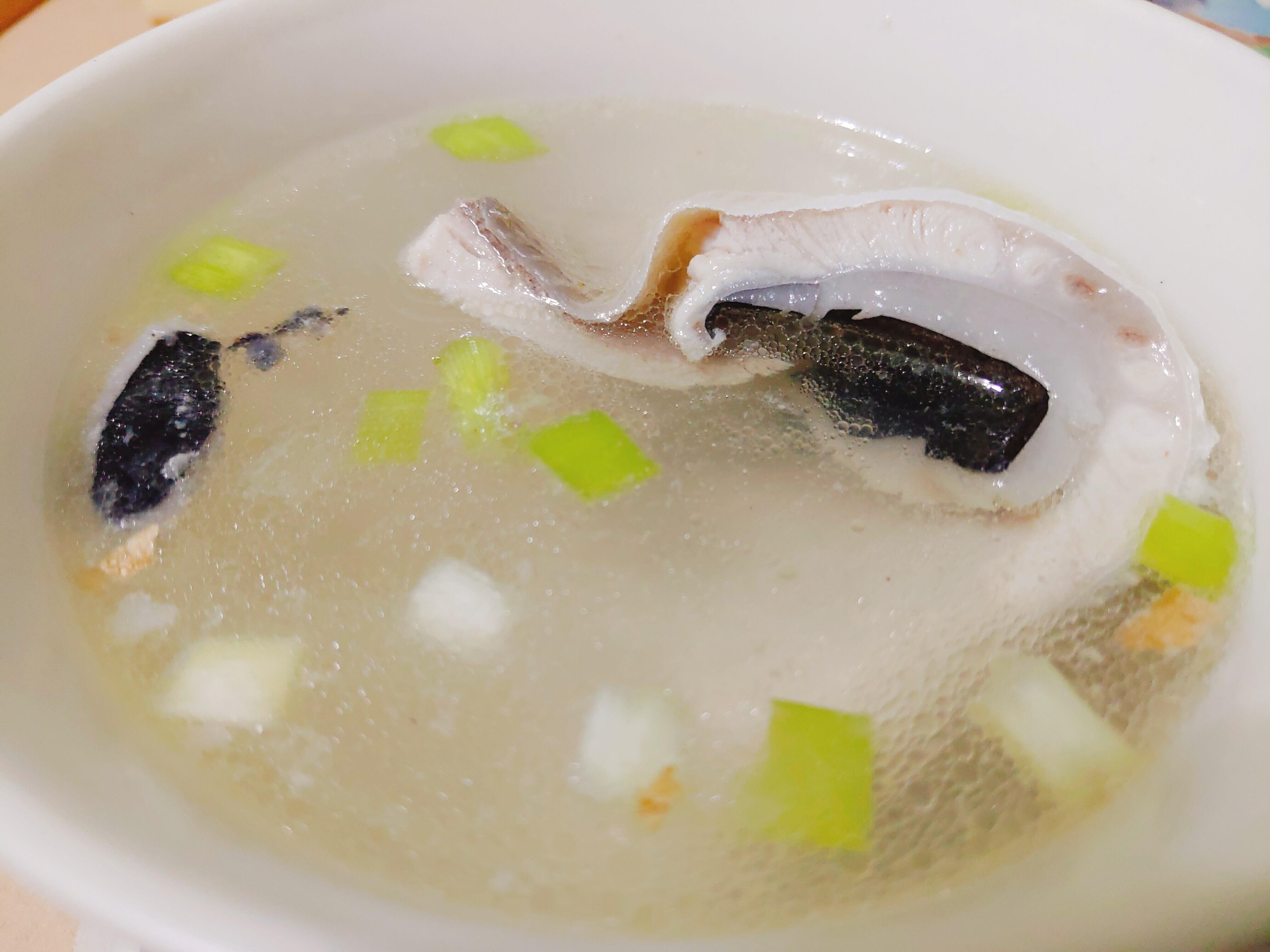 【食譜】虱目魚肚湯|簡單到連貓都會做!!!