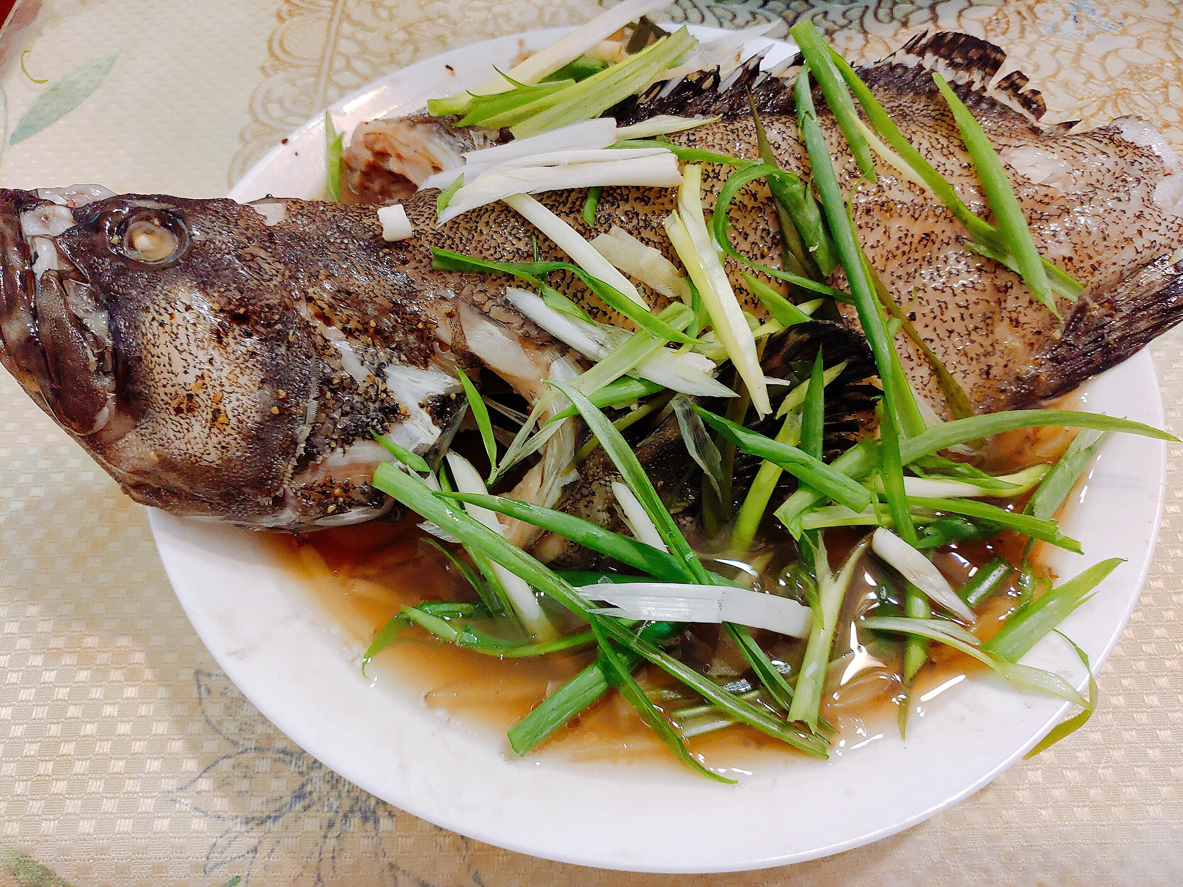 【食譜】清蒸龍虎石斑|鮮嫩可口的魚肉輕鬆就上桌