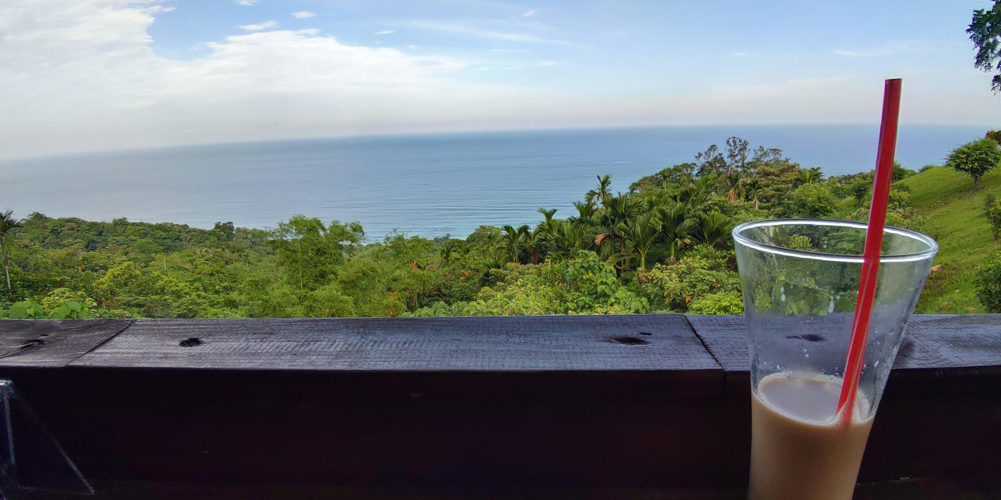 【台東長濱】星龍花園–絕美的山海景色與悠然咖啡的午後時光