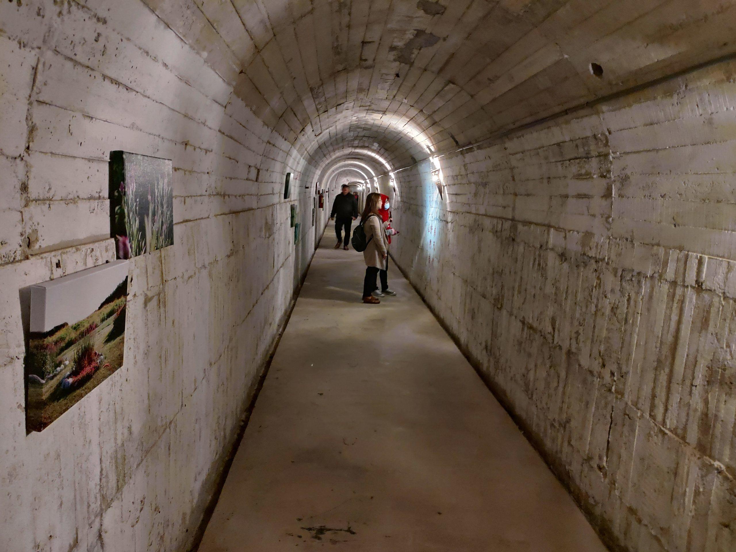 【花蓮市區】四八高地戰備坑道|2020最新開放|二戰時戰備隧道大公開